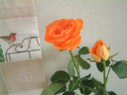b0068643_1753116.jpg