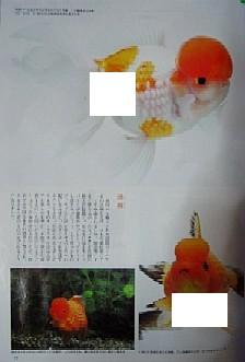 f0138974_12382057.jpg