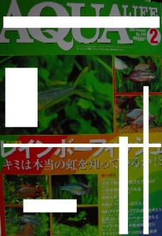 f0138974_1558813.jpg
