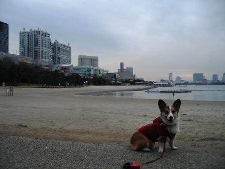 お台場散歩… ~お台場海浜公園_f0155118_23574924.jpg