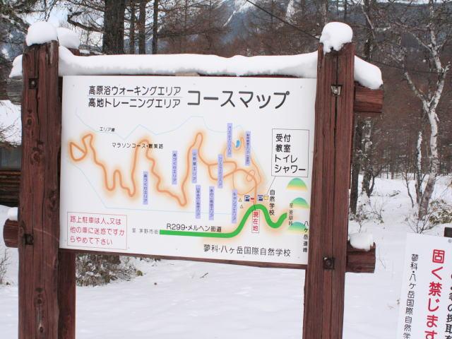 八ヶ岳国際自然学校_d0102327_017679.jpg