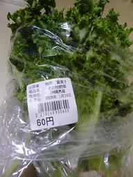 新鮮野菜たち_d0100638_1794997.jpg