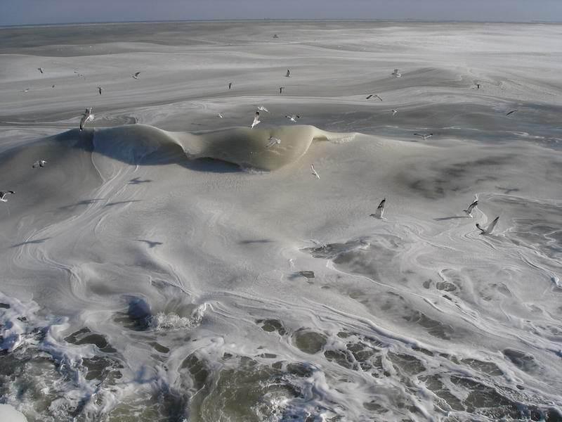 ★写真トリビア⇒南アフリカ ケープタウンの海が凍った!!(゚゚;)_a0028694_15182633.jpg