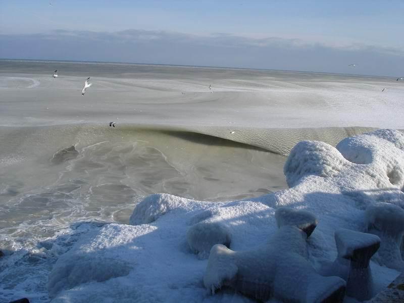 ★写真トリビア⇒南アフリカ ケープタウンの海が凍った!!(゚゚;)_a0028694_15201972.jpg
