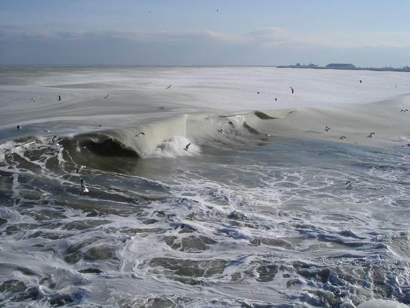 ★写真トリビア⇒南アフリカ ケープタウンの海が凍った!!(゚゚;)_a0028694_1595727.jpg