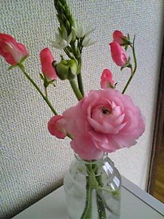c0157097_1436032.jpg