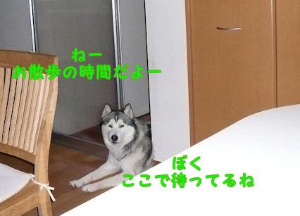 f0112407_22102542.jpg