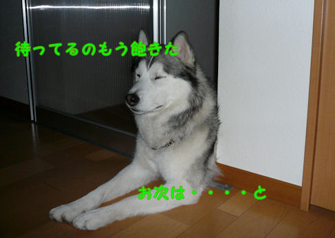 f0112407_22103551.jpg