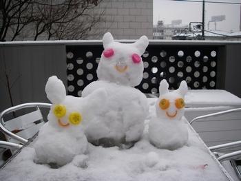 ***雪うさぎ***_e0105047_12372157.jpg