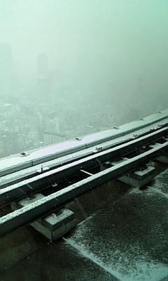 雪だっ_d0025559_10592093.jpg