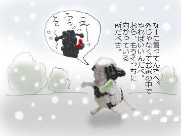 b0104065_16244437.jpg