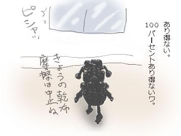b0104065_16265968.jpg