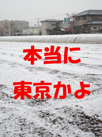 f0132070_22173752.jpg