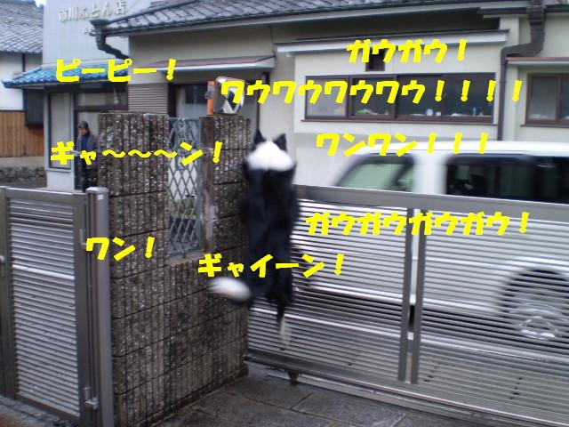 e0117976_1558145.jpg