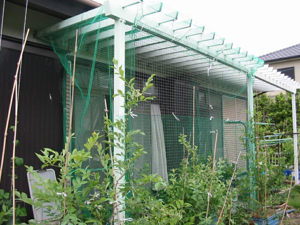 鳥害対策と鳥害防止用複合威嚇装置_f0018078_7284556.jpg