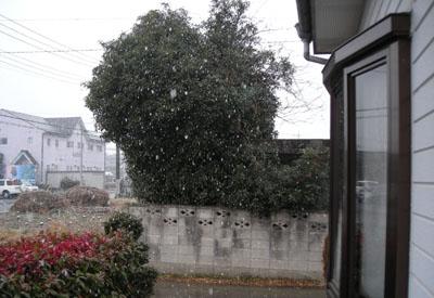 雪_d0000995_14211214.jpg