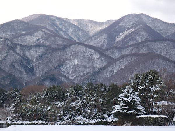 この冬初の雪景色_c0137403_193195.jpg