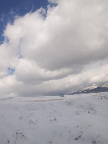 この冬初の雪景色_c0137403_19434629.jpg