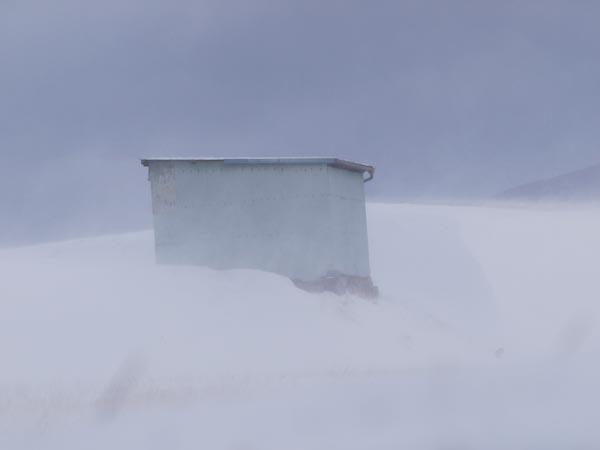 この冬初の雪景色_c0137403_1991523.jpg