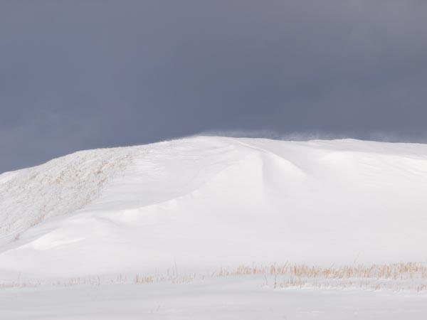 この冬初の雪景色_c0137403_1993930.jpg