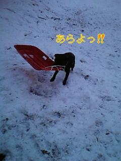 雪遊び_f0148927_22113819.jpg