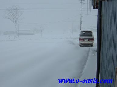 冬らしくなってきました・・・_d0141049_22272112.jpg