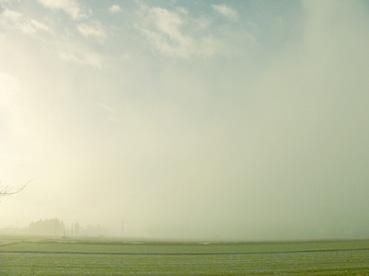 朝起きたら霧の中_b0115652_2302317.jpg