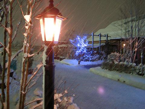 吹雪の夜に_e0084756_2355293.jpg