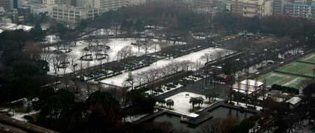 雪景色Ⅱ_b0083801_15485987.jpg