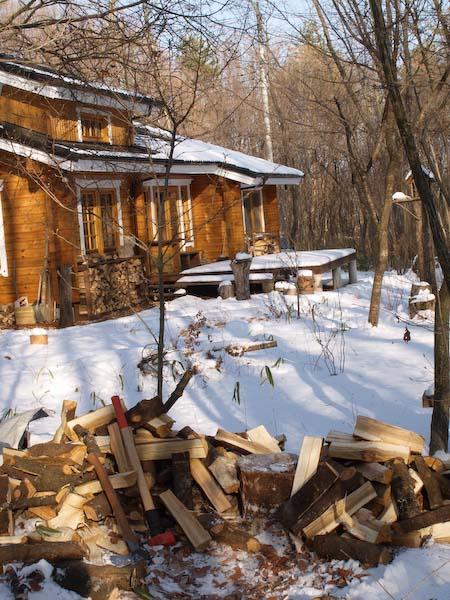 真冬の森も春の準備が進んでる!_c0137403_1834283.jpg