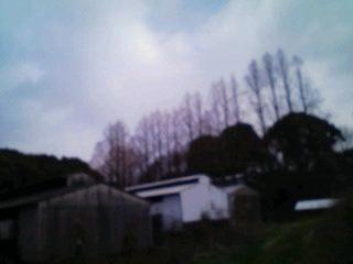d0139806_2051184.jpg