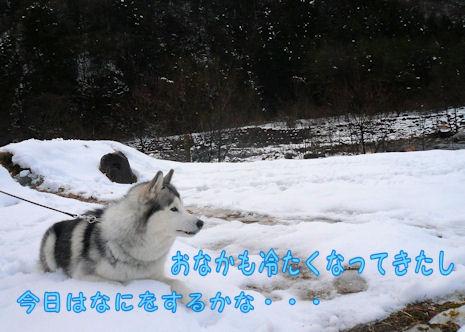 f0112407_11212435.jpg