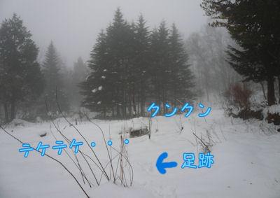 f0112407_11221836.jpg