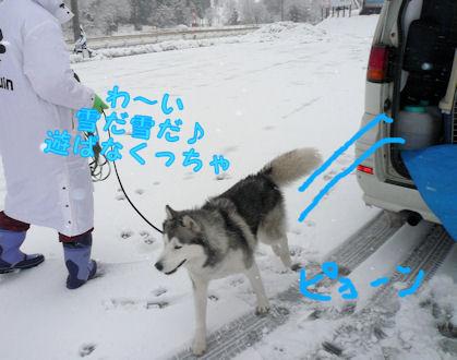 f0112407_16214527.jpg