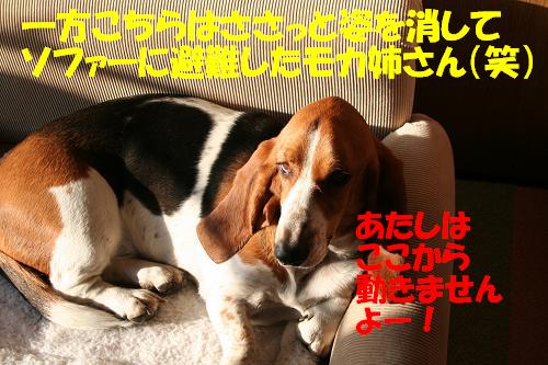 f0121712_94652.jpg