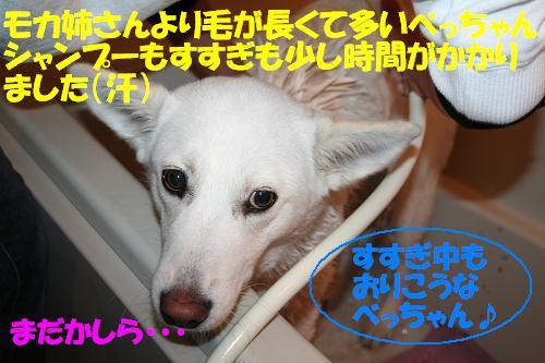 f0121712_9482585.jpg