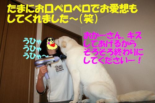 f0121712_954929.jpg