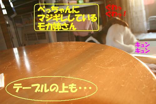 f0121712_9564628.jpg