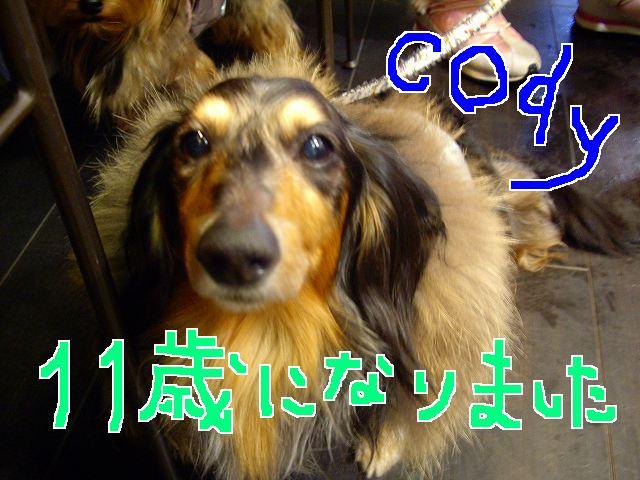 f0137518_15504275.jpg