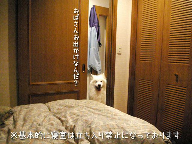 いじけ虫_c0062832_16595851.jpg