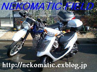 f0054133_13152454.jpg