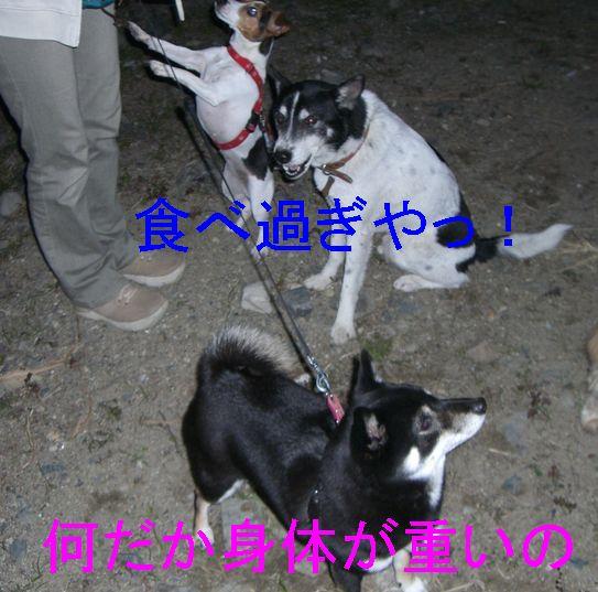 f0053952_13383073.jpg