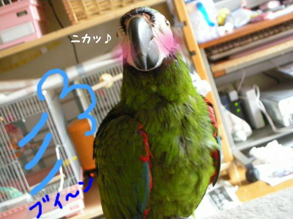 f0132055_0234060.jpg