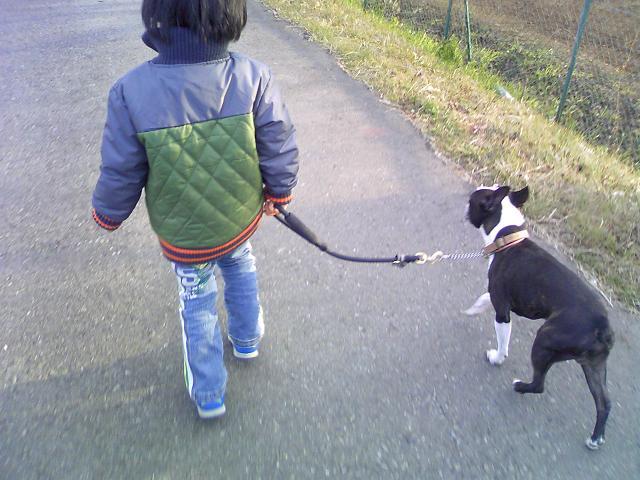 散歩3才児。_b0027203_2245134.jpg