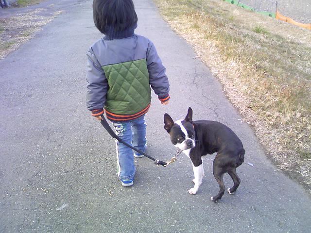 散歩3才児。_b0027203_2263885.jpg
