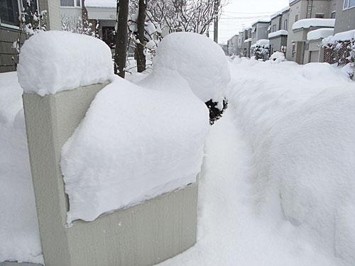 雪やこんこ♪_b0019313_18322158.jpg