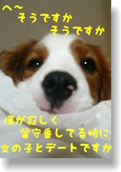c0040201_18552417.jpg
