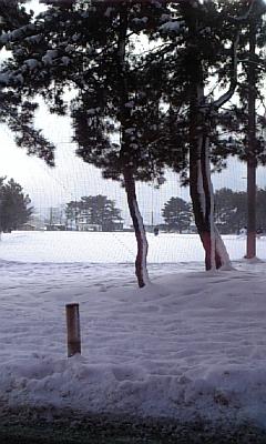 冷たくもあり、楽しくもあり。_d0005807_1142384.jpg