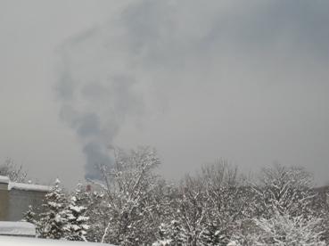 498) スナップ写真ー芸術の森 1月26日・土_f0126829_11283182.jpg