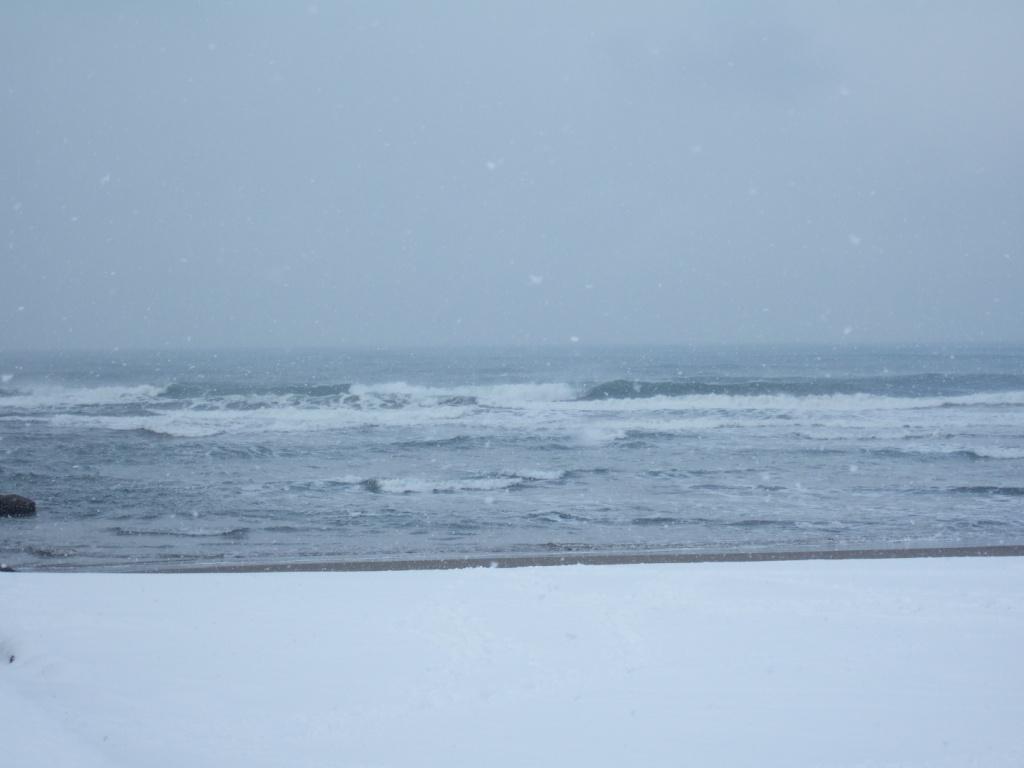 雪かき_c0132732_12164593.jpg